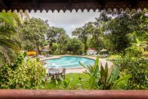 Bougainvillea Granpa's Inn