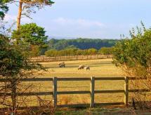 Hartswood East, Knapton