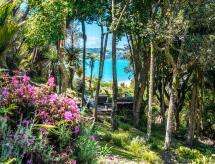 Island Paradise, Onetangi