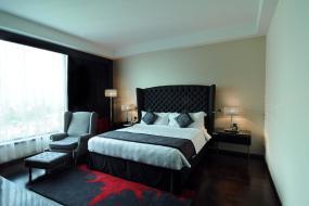 Superior Double or Twin Room, Radisson Blu Hotel New Delhi Paschim Vihar