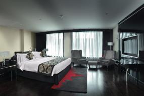 Junior Suite, Radisson Blu Hotel New Delhi Paschim Vihar