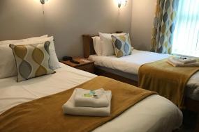 Twin Room, The Dillwyn arms hotel