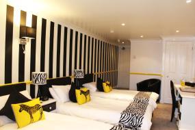 Savannah (Zebra Themed Family Room), Blacksmiths Boutique B&B