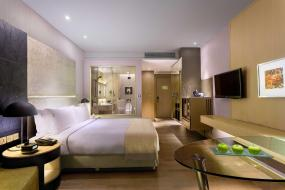 Deluxe Double Room with Free Airport Transfer, Holiday Inn New Delhi International Airport