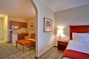 Executive King Room, Holiday Inn Express Hotel & Suites-Edmonton South, an IHG Hotel