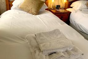 En-suite Twin Room, Carlton Lodge