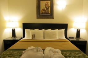 King Jacuzzi Suite - Non-Smoking, Comfort Inn & Suites Downtown Edmonton