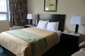 Queen Room - Non-Smoking, Comfort Inn & Suites Downtown Edmonton