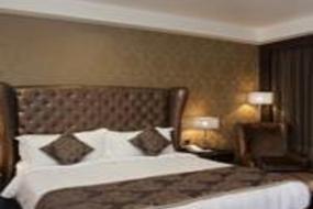 Business Double Room, Radisson Blu Hotel New Delhi Paschim Vihar