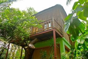 Bamboo Tree House, Michèle's Garden