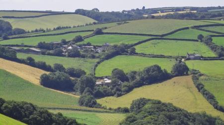 Little Larnick Farm, Pelynt