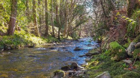 Moniack Lodges - Affleck Chalet, Kirkhill